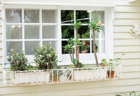 Wonderful Day